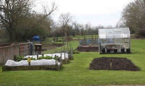 Nut Tree Inn - Gardens